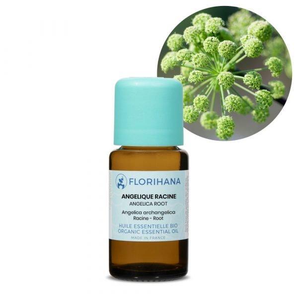 archangelika esencialny olej bio florihana