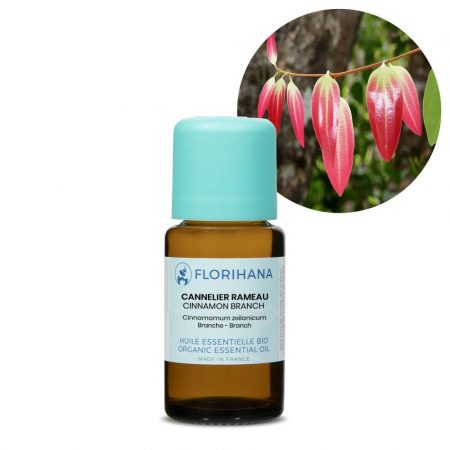 skorica listy esencialny olej bio florihana