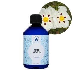 cist hydrolat