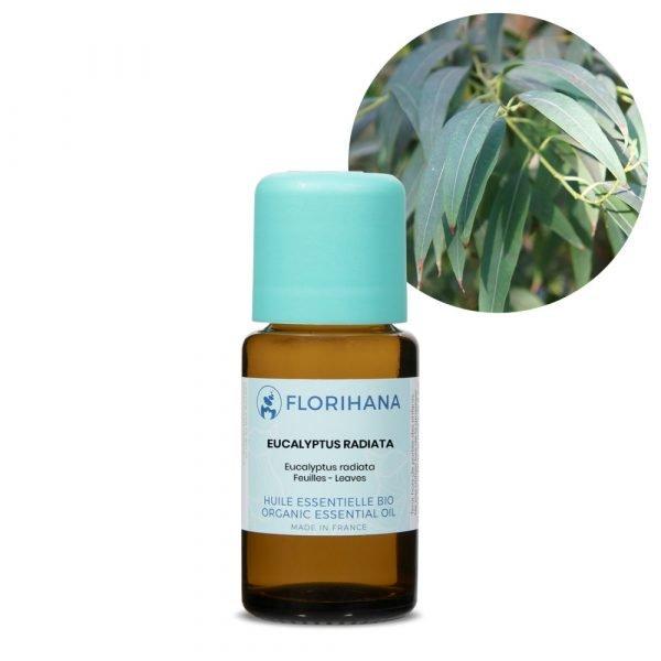 eukalyptus radiata esencialny olej bio florihana