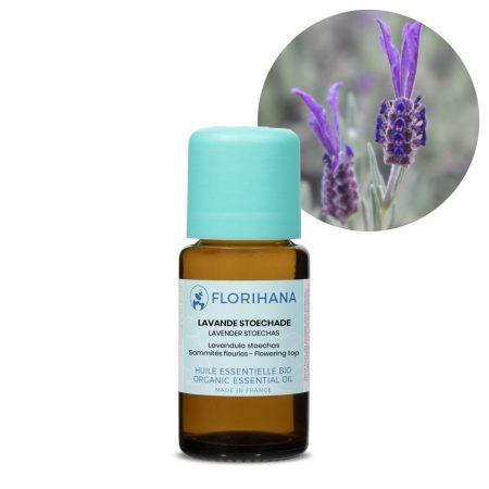levandula stoechas florihana esencialny olej bio