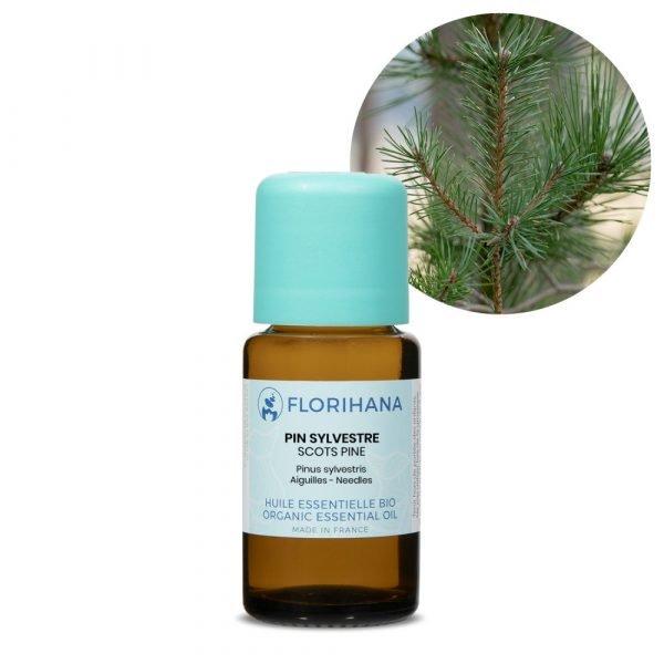 borovica lesna esencialny olej bio florihana