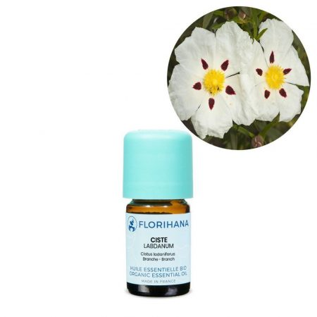 cist skalna ruza esencialny olej
