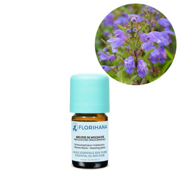vcelnik moldavsky esencialny olej bio florihana